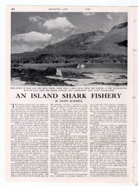 1946 COUNTRY LIFE Magazine ISLE SOAY FISHERY Virginia Montagu Curtis SOLD